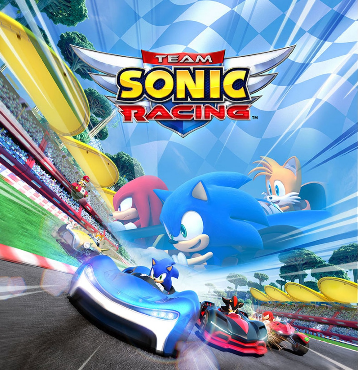 team-sonic-racing-dx-pack-585249.11